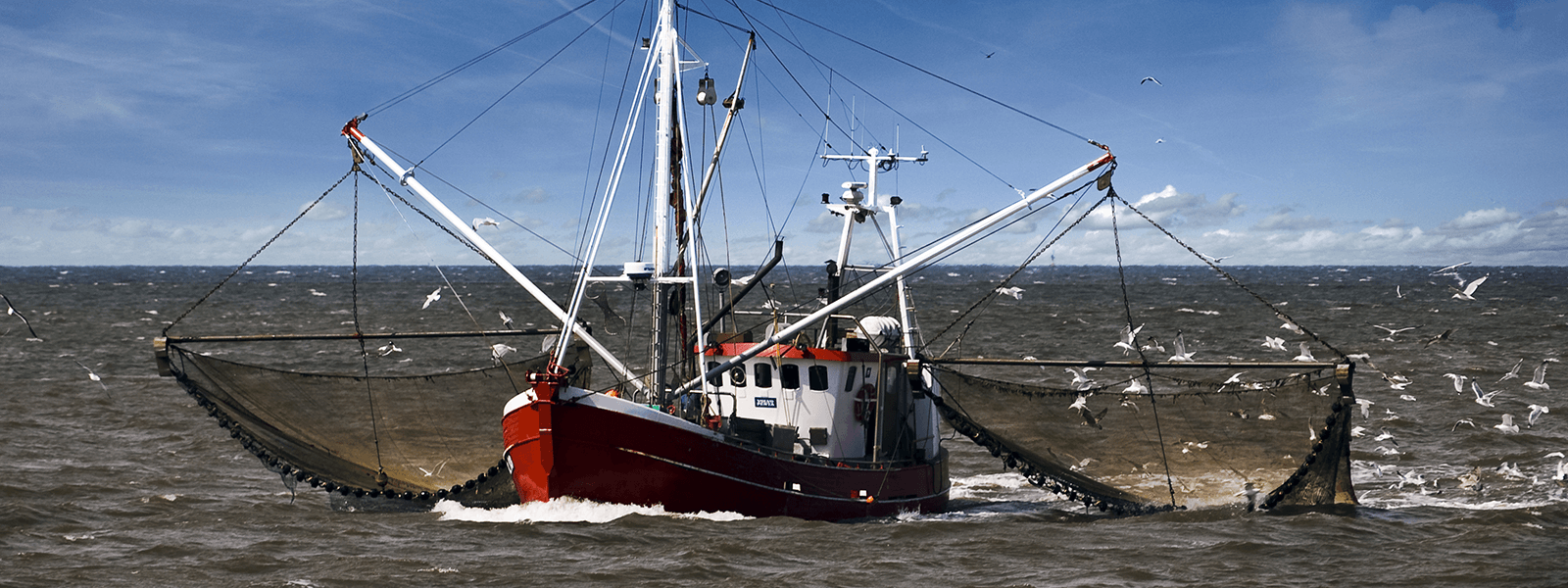 Fischerkutter fängt auf der Nordsee Fische