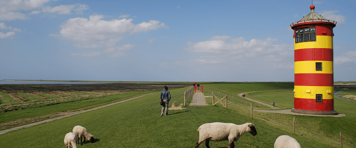 grüner Deich, Schafe und ein gelb-rot gestreifter Leuchtturm